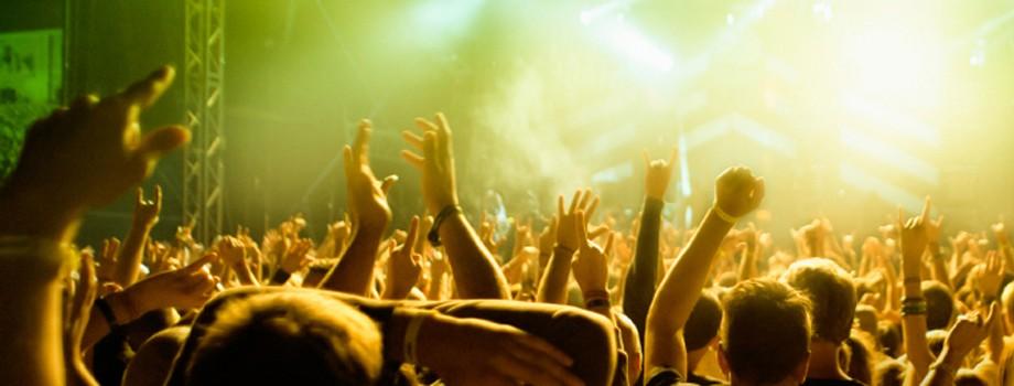 Konserter & Festivaler